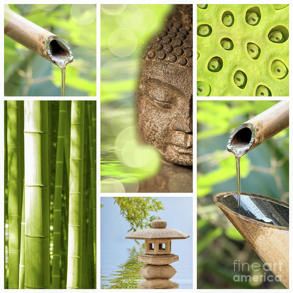 Buddha Art Print featuring the photograph Green Collage by Delphimages Photo Creations