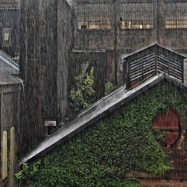 Bethlehem Art Print featuring the photograph Hard Rain by DJ Florek