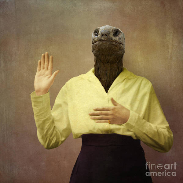 Turtle Art Print featuring the photograph I Swear I Won't Do Botox Anymore by Martine Roch