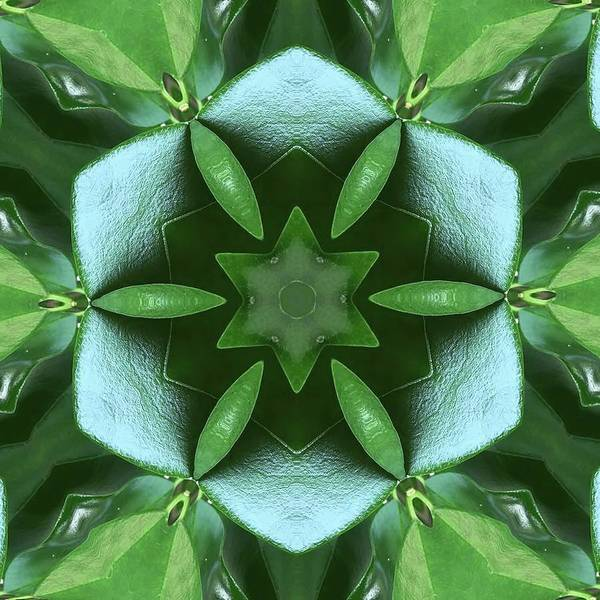 Nature Art Print featuring the photograph Kaleidoscope My Garden 3 by Karen Jensen