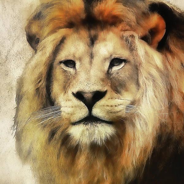 Lion Art Print featuring the photograph Lion Majesty by Athena Mckinzie