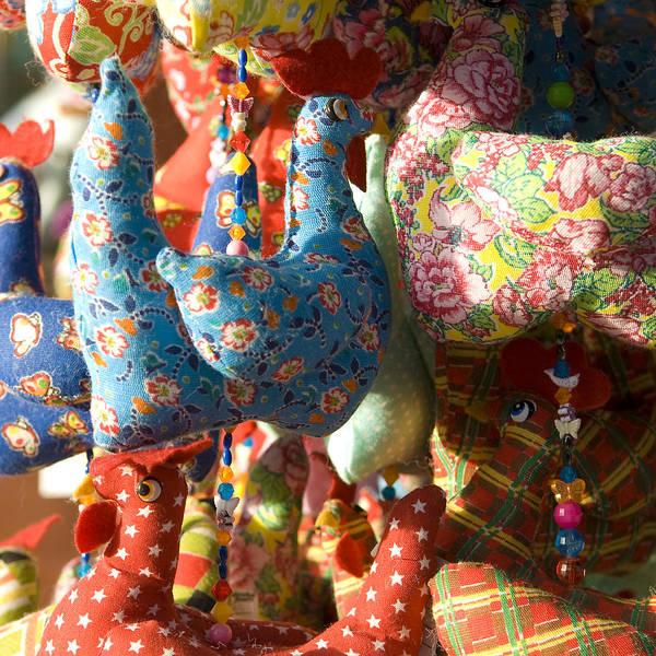 Porto De Galihnas Art Print featuring the photograph Little Hens by Eugenia Picado