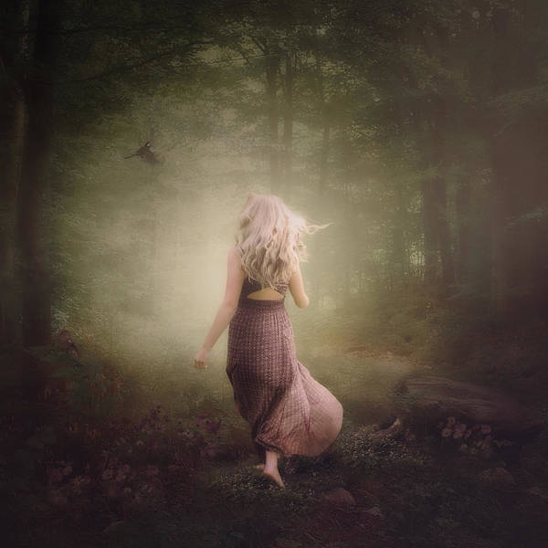 Forest Art Print featuring the photograph Magically Light by Cindy Grundsten