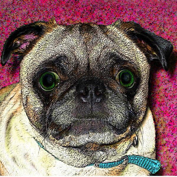 Dog Art Print featuring the photograph Maximus by Cara Maler