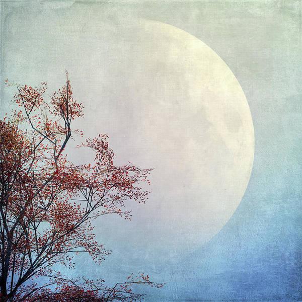 Moon Art Print featuring the digital art Moonlight by Andreas Hoops