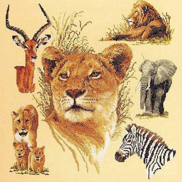 Needlework Art Print featuring the photograph Needlework - African Animals by Merton Allen