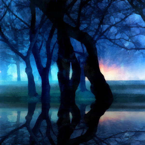 Fog Night Glowing Glow Trees City Park Creepy Dark Evening Silhouette Branches Reflections Art Print featuring the digital art Night Fog In A City Park by Francesa Miller