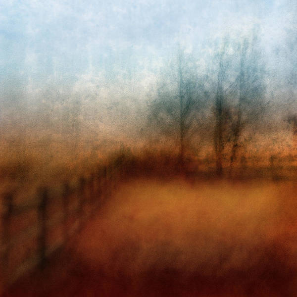 Field Art Print featuring the photograph November Field by Kelly Kellogg