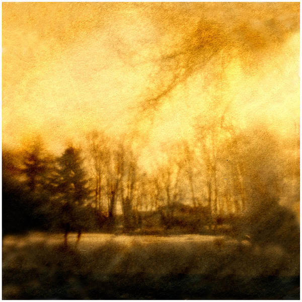 Amber Light Art Print featuring the photograph Parkview Ave by Diana Ludwig