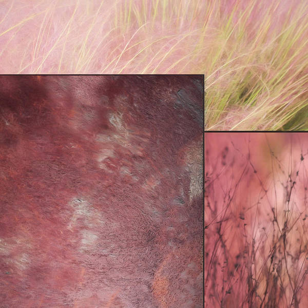 Abstract Art Print featuring the photograph Pink Textures 2 by Lori Deiter