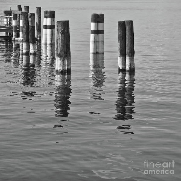 Water Art Print featuring the photograph Poles In The Water by Gabriela Insuratelu