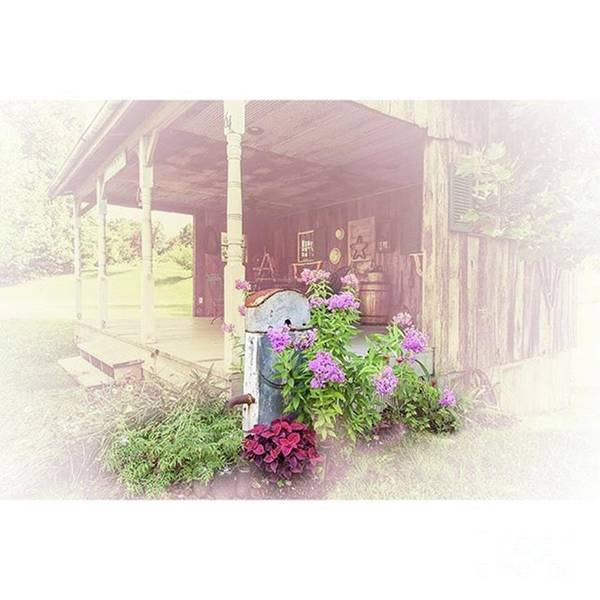 Ruralphotography Art Print featuring the photograph Pump With Flowers Brazeau by Larry Braun