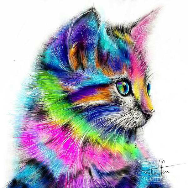 Image result for rainbow cats art