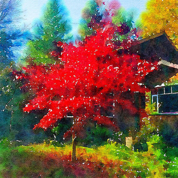 Autumn Art Print featuring the photograph Red Tree by Ronda Broatch