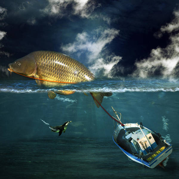 Fish Art Print featuring the photograph Revenge by Martine Roch