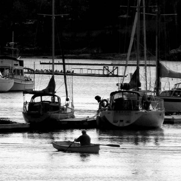 Docks Art Print featuring the digital art Rowing To Shore by Donna Thomas