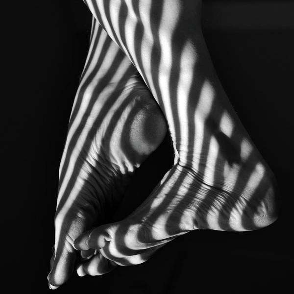 Black And White Art Print featuring the photograph Shadow Walker by Shelly Wickens
