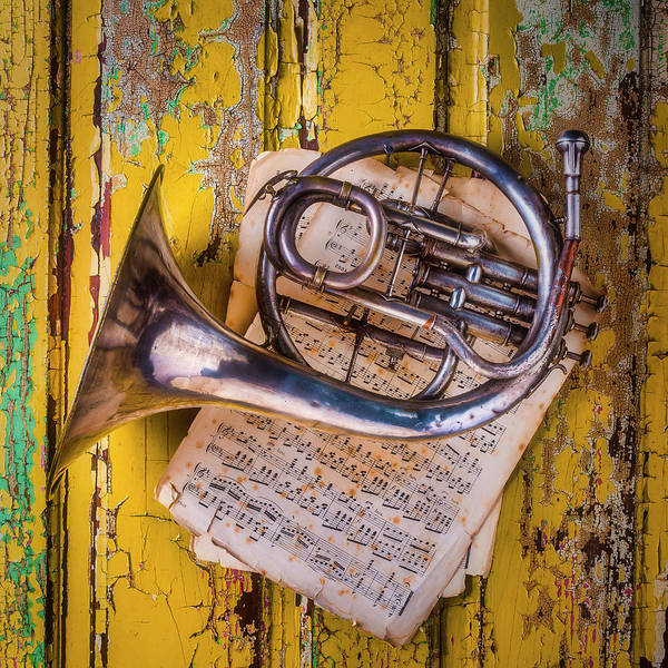 Small Art Print featuring the photograph Small French Horn by Garry Gay