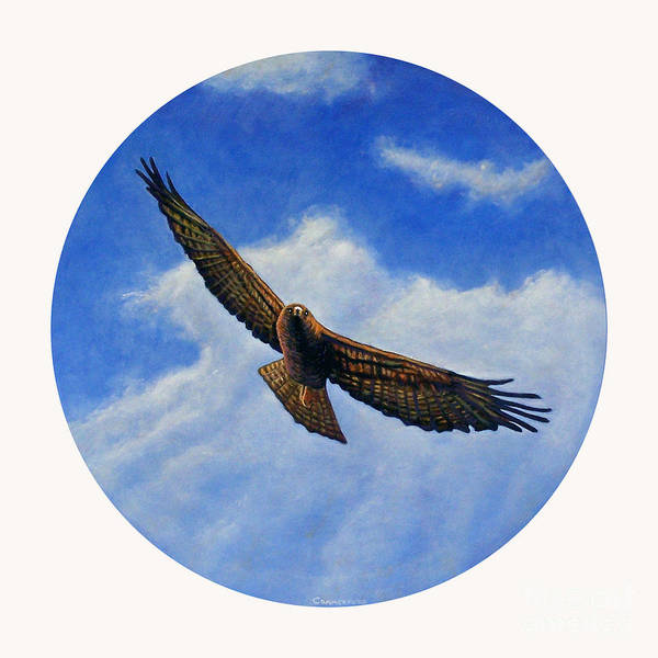 Hawk Art Print featuring the painting Spirit In The Wind by Brian Commerford