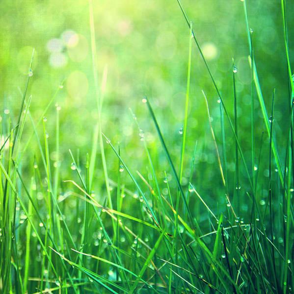 Square Art Print featuring the photograph Spring Green Grass by Dirk Wüstenhagen Imagery