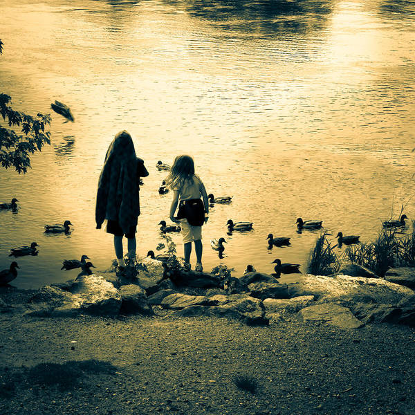 Kids Art Print featuring the photograph Talking To Ducks by Bob Orsillo
