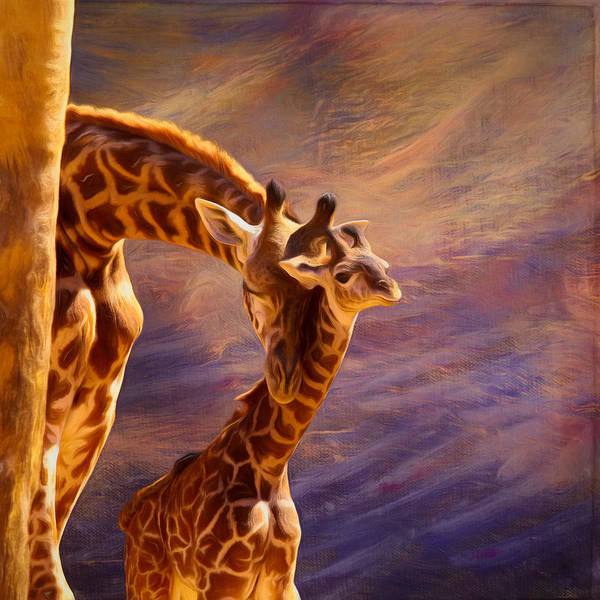 Giraffe Art Print featuring the mixed media Tenderness Painted by Judy Vincent