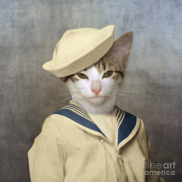 Cat Art Print featuring the photograph The Little Rascal by Martine Roch