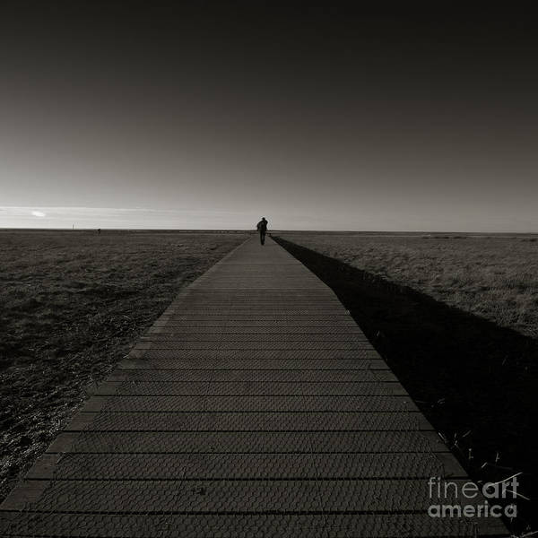 Bridge Art Print featuring the photograph The Road To Nowhere by Angel Ciesniarska
