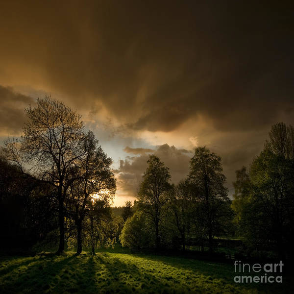 Sunset Art Print featuring the photograph The Sunset Behind My Fence by Angel Ciesniarska