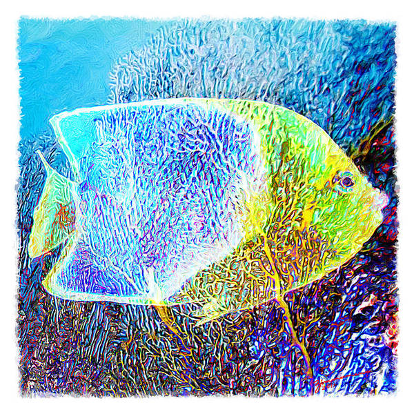 Fish Art Print featuring the digital art Water Boy 1 by Marcos Germano Zimmermann