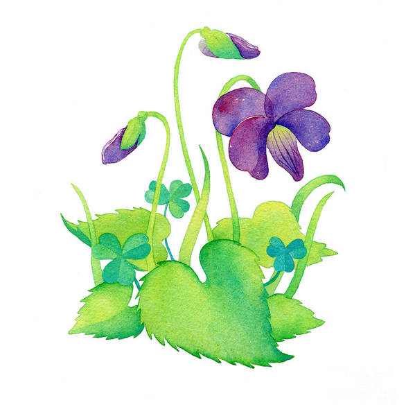 Violet Art Print featuring the painting Wild Violet by Laura Nikiel