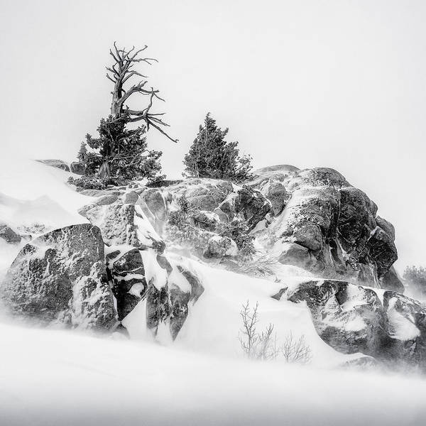 Winter Art Print featuring the photograph Winter Hwy 40 by Steve Spiliotopoulos