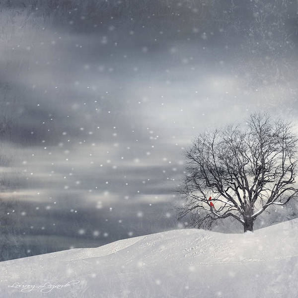Four Seasons Print featuring the photograph Winter by Lourry Legarde