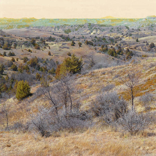 North Dakota Art Print featuring the photograph April Prairie Reverie by Cris Fulton