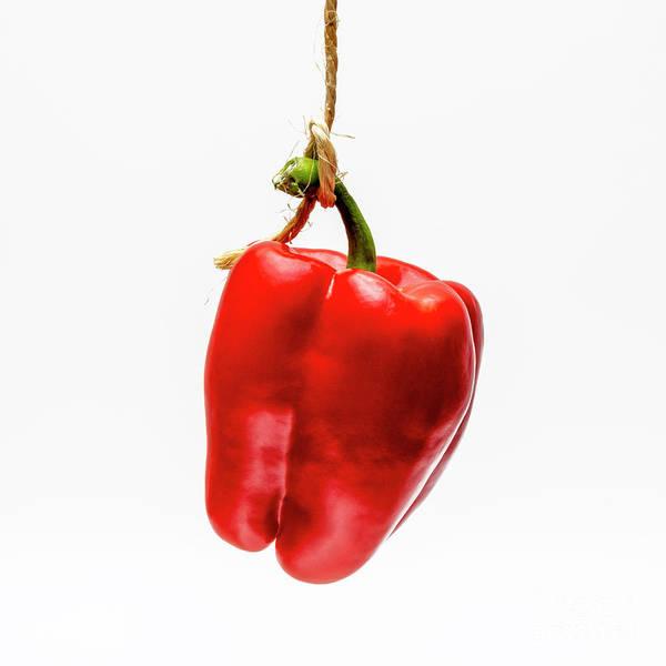 Studio Shot Art Print featuring the photograph Red Bell Pepper On A White Background by Bernard Jaubert