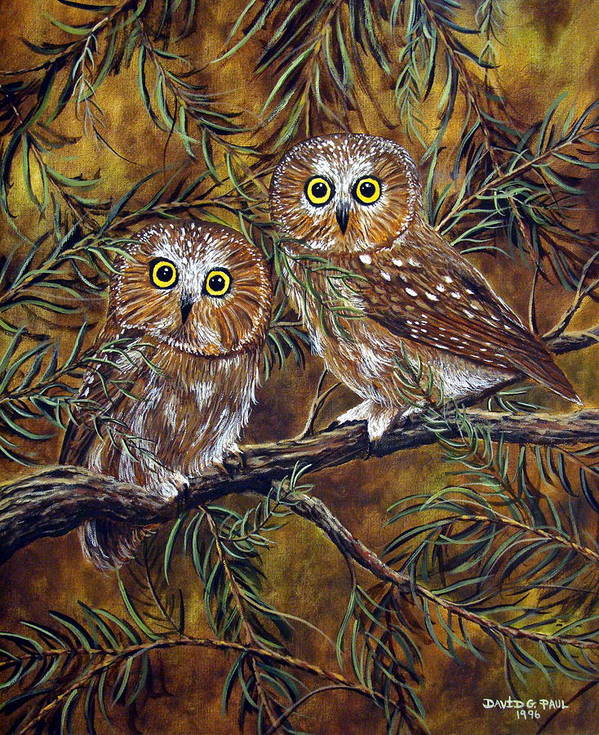 Owls Art Print featuring the painting Branch Buddies by David G Paul