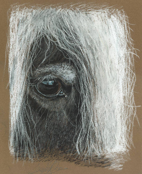Pastel Fine Art Print featuring the pastel Equine Eye Detail by Terry Kirkland Cook