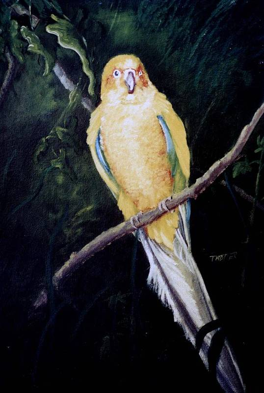 Animal Art Print featuring the painting Zoo Bird by Jimmie Trotter