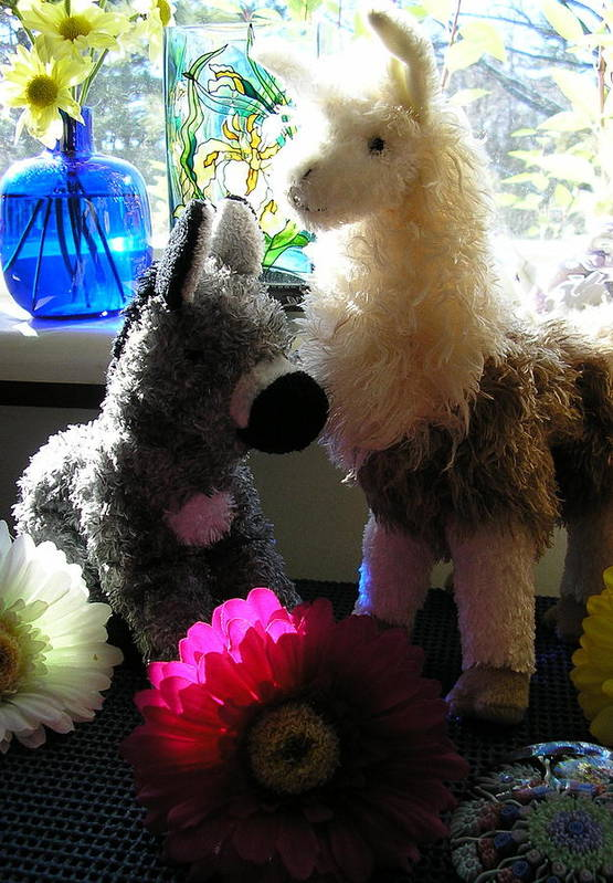 Stuffed Animals Art Print featuring the photograph Donkey Joti And Dali Llama by Christina Gardner
