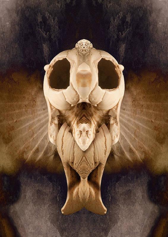 Spirit Art Print featuring the photograph Sea Spirit by WB Johnston