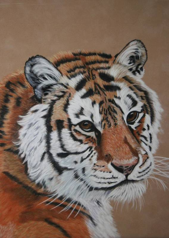 Tiger Art Print featuring the painting Siberian Tiger by Lori DeBruijn