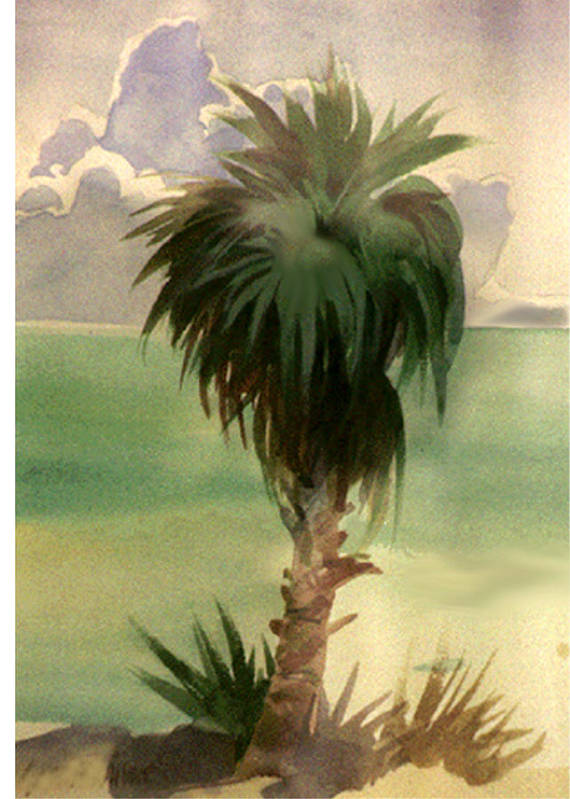 Palm Art Print featuring the painting Palm At Horseshoe Cove by Neal Smith-Willow