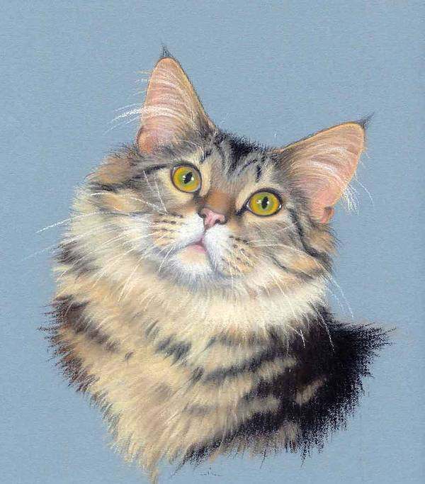 Domestic Animal Art Print featuring the painting Cat Portrait by Deb Owens-Lowe