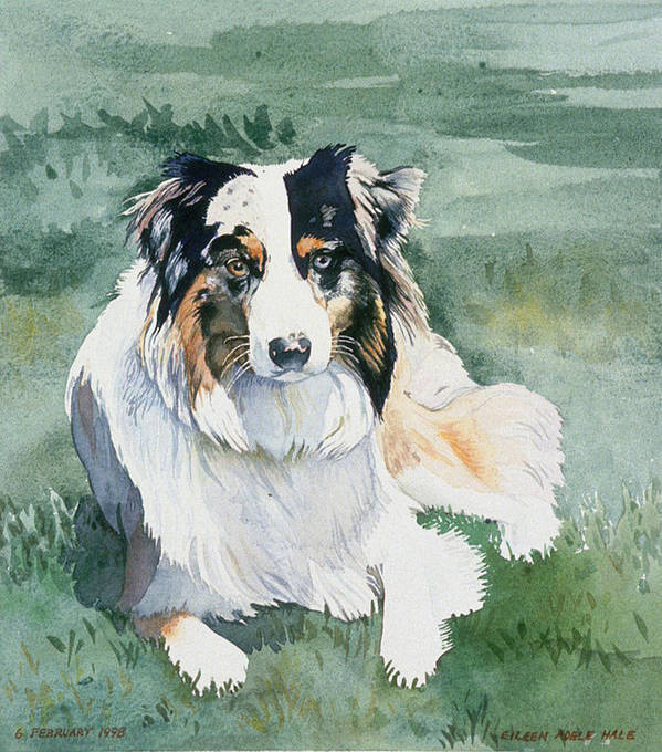 Portrait Art Print featuring the painting Cisco by Eileen Hale