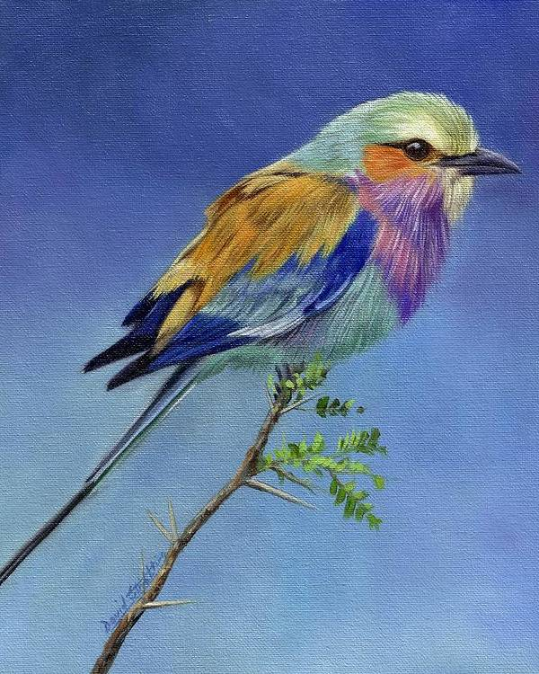 Lilacbreasted Roller by David Stribbling