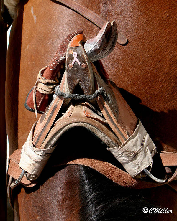 Rodeo Art Print featuring the photograph Showing Support for Pink.. by Carol Miller