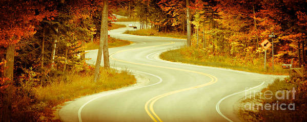 Door County Art Print featuring the photograph Road Bending Through The Trees by Ever-Curious Photography