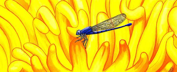 Insect Art Print featuring the painting Darning Needle by Catherine G McElroy