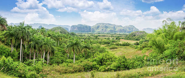 Cuba Art Print featuring the photograph Vinales Valley by Delphimages Photo Creations