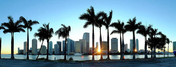 Downtown District Art Print featuring the photograph Miami Skyline Viewed Over Marina by Travelpix Ltd